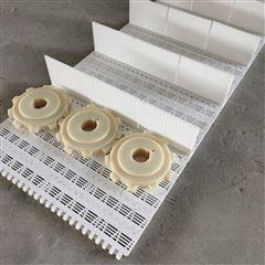 提升挡板式塑料网带