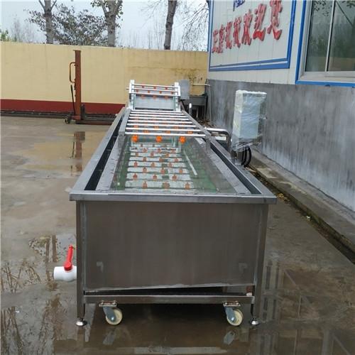 供应全自动蔬菜预煮机