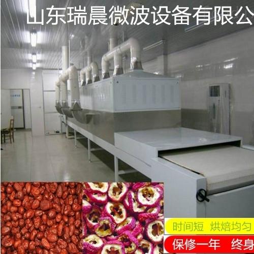 山楂片微波干燥灭菌设备厂家现货