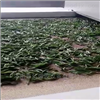 XHW-15KW可定制茶叶干燥杀菌机