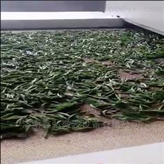 绿茶烘干杀青微波设备