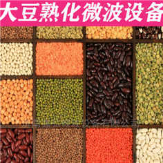 鑫弘微波五谷杂粮烘干熟化设备