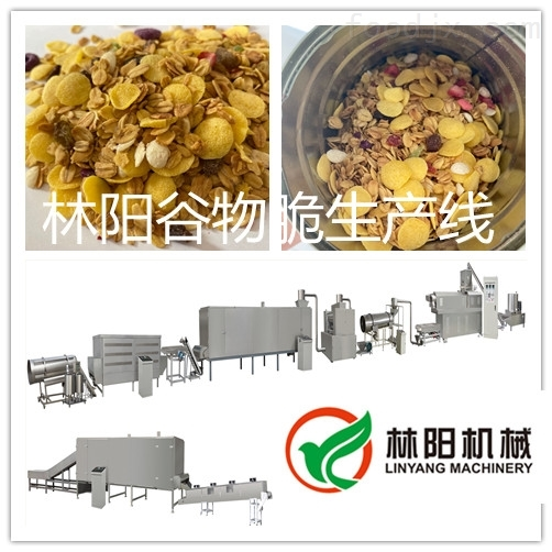 枣庄风味营养谷物脆设备