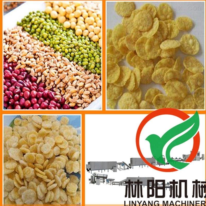 林阳低脂营养膨化谷物脆生产线