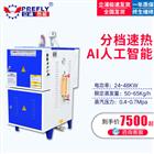 LDR0.05-0.736KW环保蒸汽发生器煮豆浆酿酒蒸馒头电锅炉
