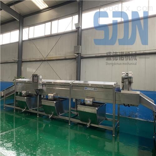 生产粘玉米加工设备流水线