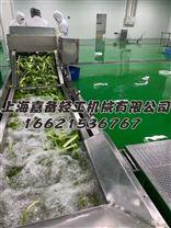 小型净菜设备 JC-111  上海嘉备轻工制造