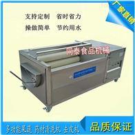 TQX-1000桔梗何首乌清洗机全自动商用三七洗泥设备