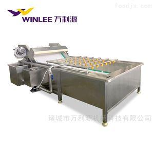 WLYQX-6000苹果橘子油桃气泡清洗机