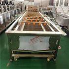 q--5000果蔬清洗设备 芹菜气泡清洗机