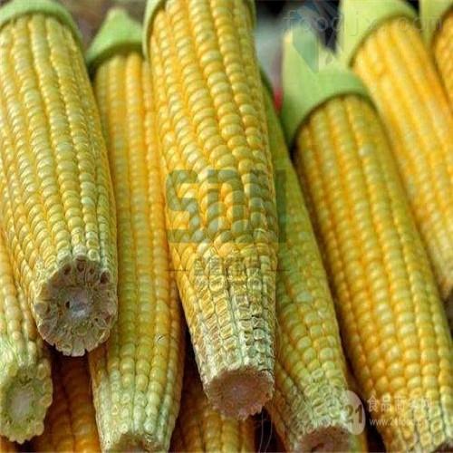 全自动鲜食玉米清洗设备