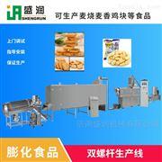 TSE65山东盛润供应膨化休闲小食品生产加工机械