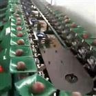 XGJ-SZZ海南海口百香果选果机 自动上果 水果分选机