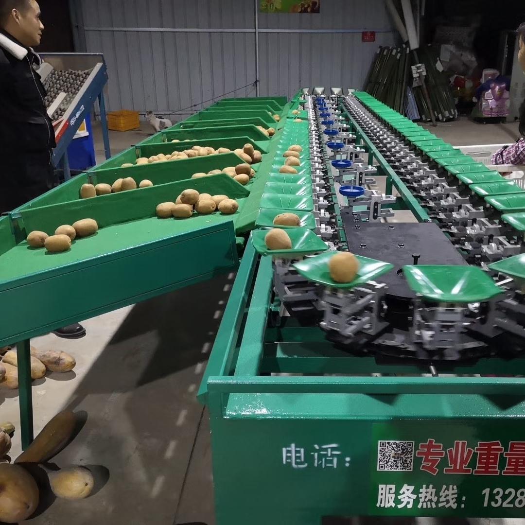 眉县自动分拣机厂家   猕猴桃分级机