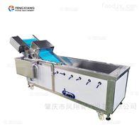 WA-1000多功能洗菜机 气泡清洗机