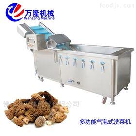 QB-25不锈钢气泡喷淋空心菜清洗机