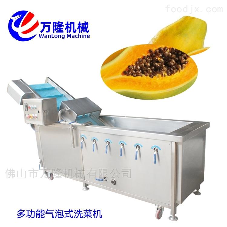 多功能木瓜洗菜机经久耐用