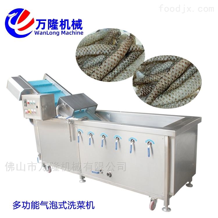 厂家快捷中型气泡豇豆洗菜机