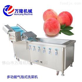 XC-2000自动化鱼块洗菜机定制质量可靠