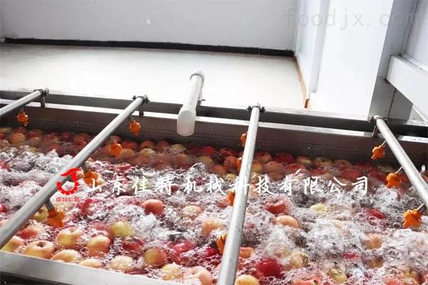 蔬菜清洗机.jpg