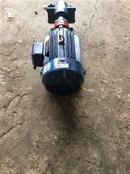 电动齿轮泵