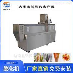 XH-65型淀粉大米吸管生产线 吸管膨化设备