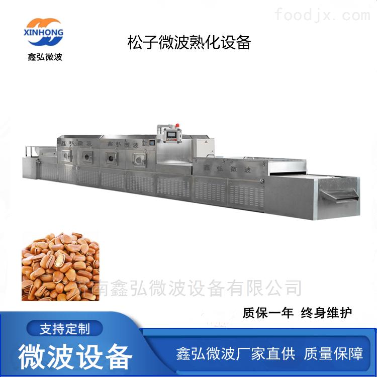 松子微波熟化烘干设备 干果干燥杀虫机