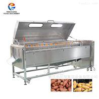 MSTP-3000凤翔 砂辊毛刷去皮机 木薯土豆去皮清洗机