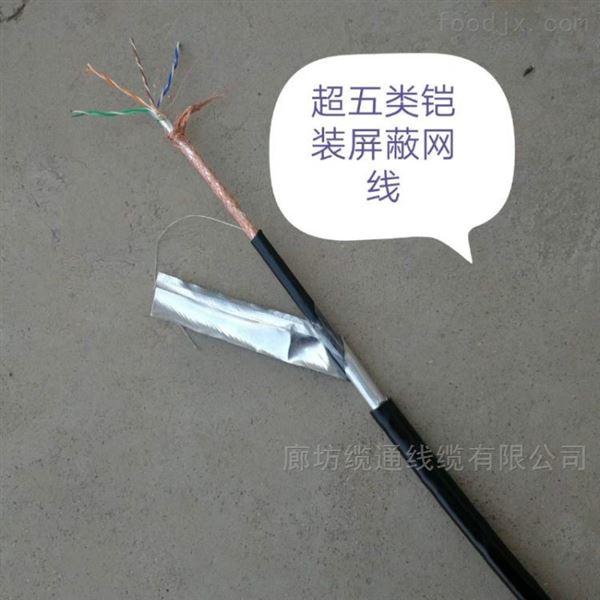 网络用双绞线ASTPCAT.5E4*2*24AWG