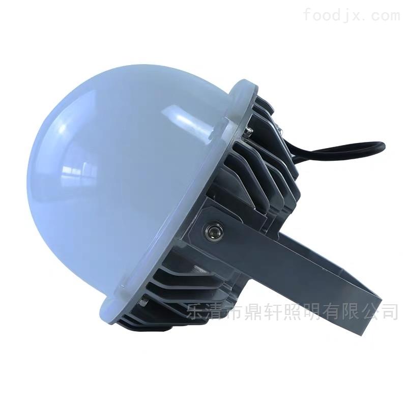 车间免维护三防泛光灯吊杆壁灯70W80W100W