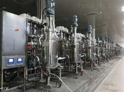10联体自动发酵罐