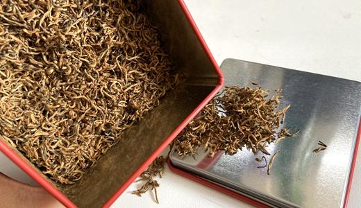 紅茶加工技術標準征求意見 促進茶品跨越再提升
