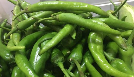 辣椒價格趕超豬肉 深加工助推辣椒產業高質量發展