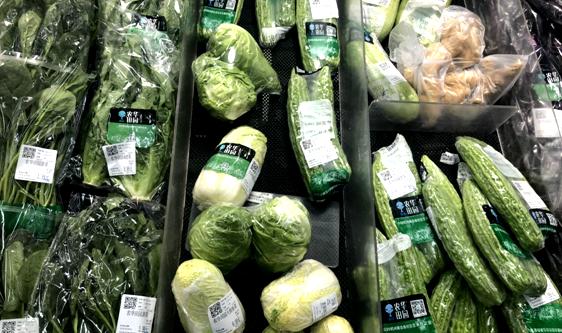 从源头减少损耗 干燥技术实现脱水蔬菜增值又增收