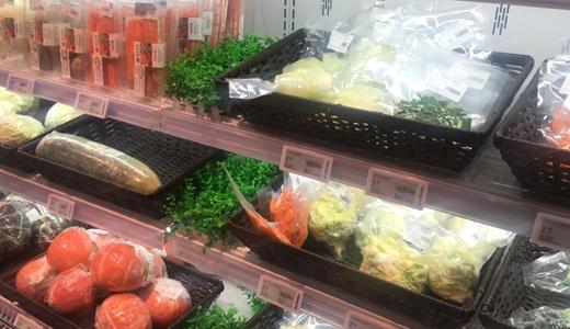 俄罗斯科研团队研发出生态型食品包装薄膜