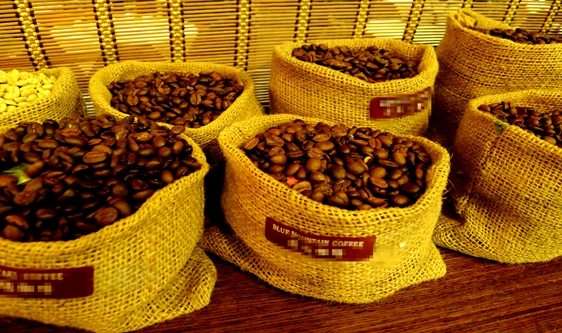 高分别率色选机促进品级提升 带来香醇丝滑的咖啡体验