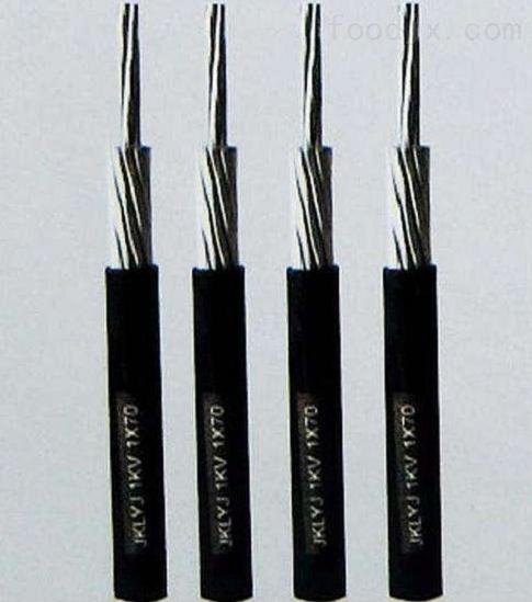长汀县热电偶补偿电缆KX-GS-VPV2*2*1.5