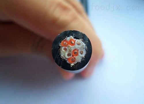 富平县高温扁平电缆YFFB-2G-3*16