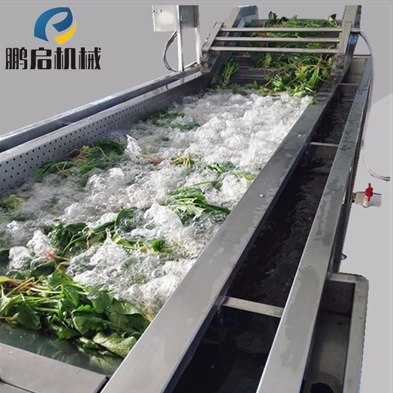 饶阳肉苁蓉清洗机生产厂家