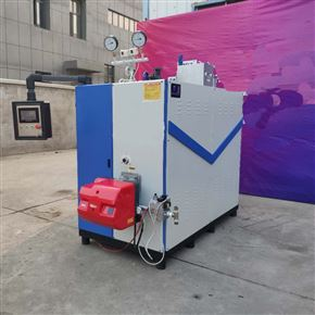 立浦0.5吨高温燃汽发生器食品厂热水供应